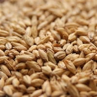 Briess Pale Malt 1-LB